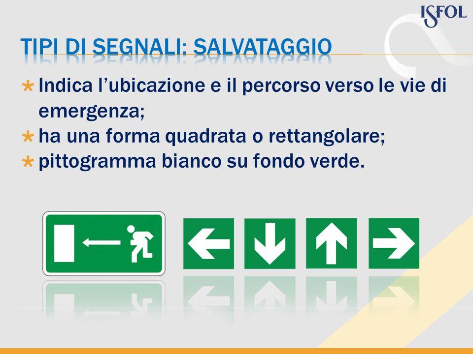 Indica lubicazione e il percorso verso le vie di emergenza; ha una forma quadrata o rettangolare; pittogramma bianco su fondo verde.