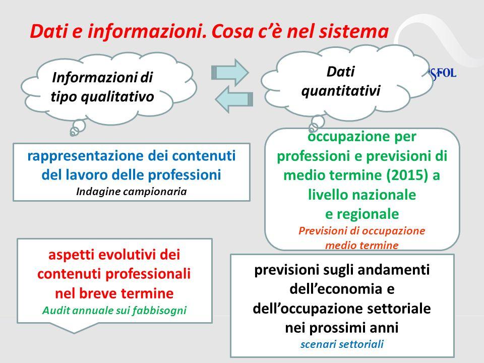 4 Dati e informazioni. Cosa cè nel sistema rappresentazione dei contenuti del lavoro delle professioni Indagine campionaria aspetti evolutivi dei cont