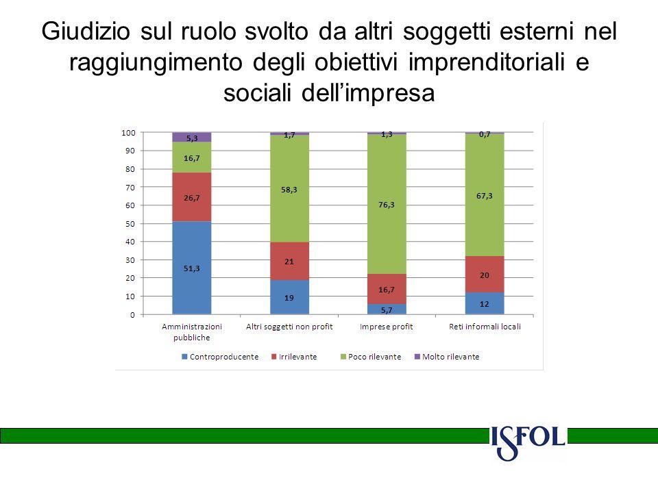 Giudizio sul ruolo svolto da altri soggetti esterni nel raggiungimento degli obiettivi imprenditoriali e sociali dellimpresa