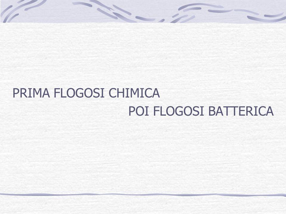 PRIMA FLOGOSI CHIMICA POI FLOGOSI BATTERICA