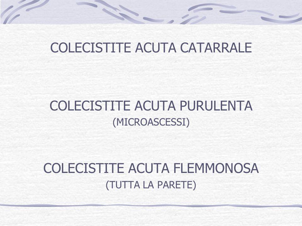 COLECISTITE ACUTA CATARRALE COLECISTITE ACUTA PURULENTA (MICROASCESSI) COLECISTITE ACUTA FLEMMONOSA (TUTTA LA PARETE)