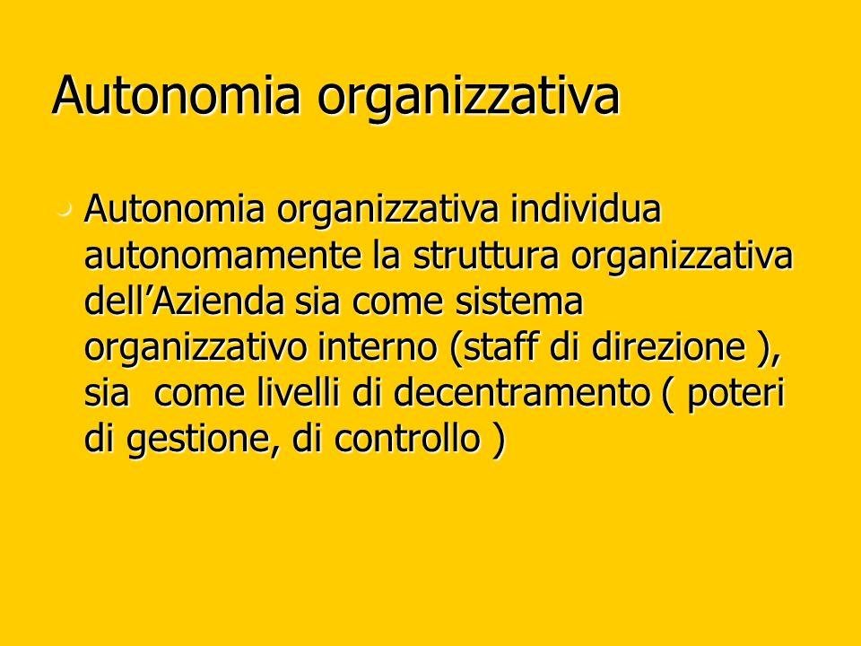 Autonomia organizzativa Autonomia organizzativa individua autonomamente la struttura organizzativa dellAzienda sia come sistema organizzativo interno (staff di direzione ), sia come livelli di decentramento ( poteri di gestione, di controllo ) Autonomia organizzativa individua autonomamente la struttura organizzativa dellAzienda sia come sistema organizzativo interno (staff di direzione ), sia come livelli di decentramento ( poteri di gestione, di controllo )