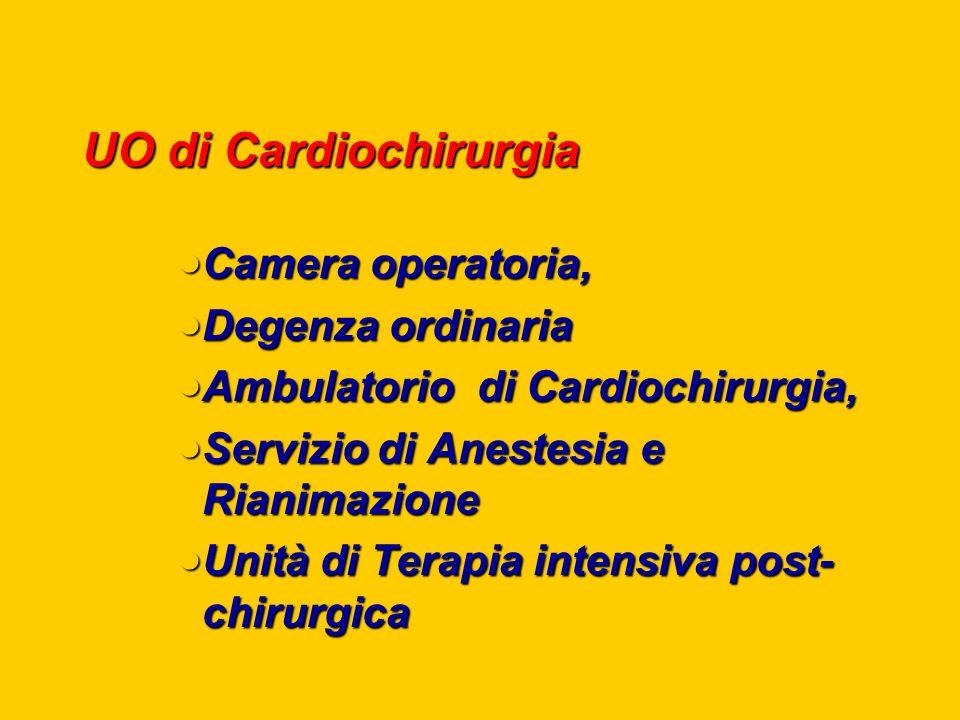 UO di Cardiochirurgia Camera operatoria, Camera operatoria, Degenza ordinaria Degenza ordinaria Ambulatorio di Cardiochirurgia, Ambulatorio di Cardiochirurgia, Servizio di Anestesia e Rianimazione Servizio di Anestesia e Rianimazione Unità di Terapia intensiva post- chirurgica Unità di Terapia intensiva post- chirurgica