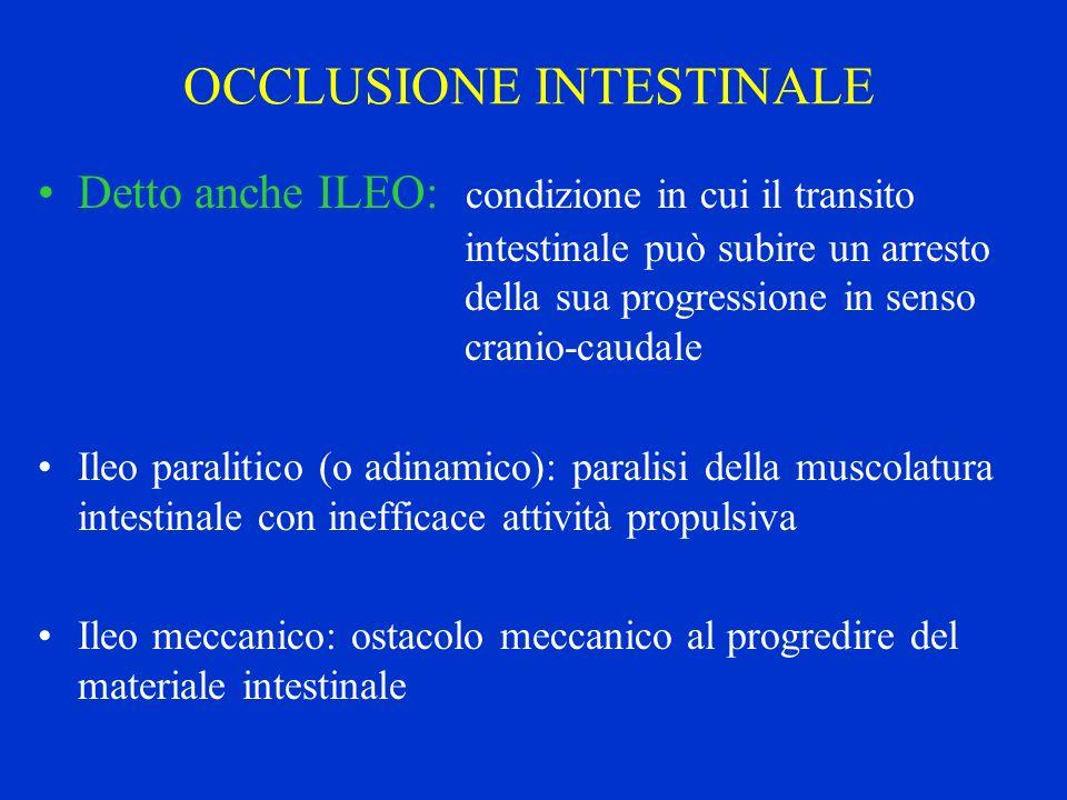 OCCLUSIONE INTESTINALE Detto anche ILEO: condizione in cui il transito intestinale può subire un arresto della sua progressione in senso cranio-caudal