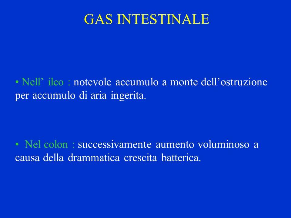 GAS INTESTINALE Nell ileo : notevole accumulo a monte dellostruzione per accumulo di aria ingerita. Nel colon : successivamente aumento voluminoso a c