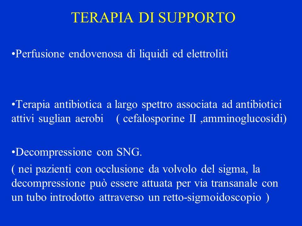 TERAPIA DI SUPPORTO Perfusione endovenosa di liquidi ed elettroliti Terapia antibiotica a largo spettro associata ad antibiotici attivi suglian aerobi