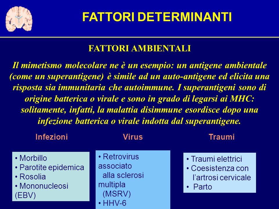 FATTORI AMBIENTALI Il mimetismo molecolare ne è un esempio: un antigene ambientale (come un superantigene) è simile ad un auto-antigene ed elicita una risposta sia immunitaria che autoimmune.