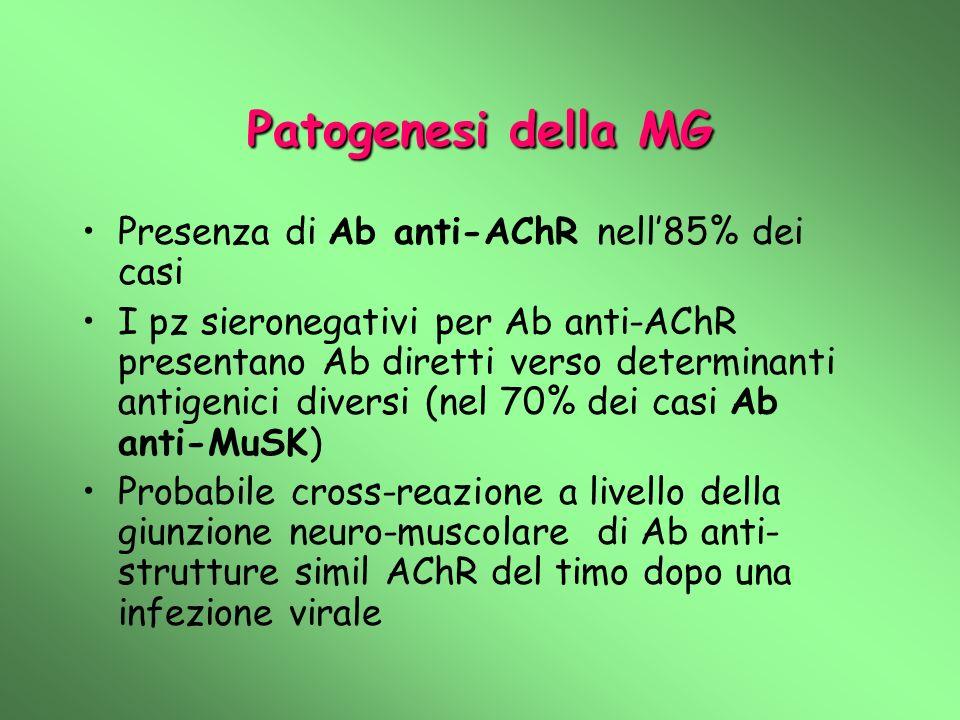 Patogenesi della MG Presenza di Ab anti-AChR nell85% dei casi I pz sieronegativi per Ab anti-AChR presentano Ab diretti verso determinanti antigenici diversi (nel 70% dei casi Ab anti-MuSK) Probabile cross-reazione a livello della giunzione neuro-muscolare di Ab anti- strutture simil AChR del timo dopo una infezione virale