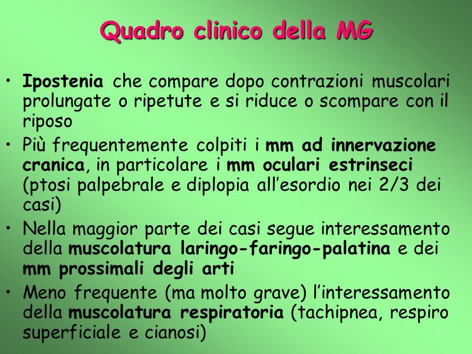 Quadro clinico della MG Ipostenia che compare dopo contrazioni muscolari prolungate o ripetute e si riduce o scompare con il riposo Più frequentemente