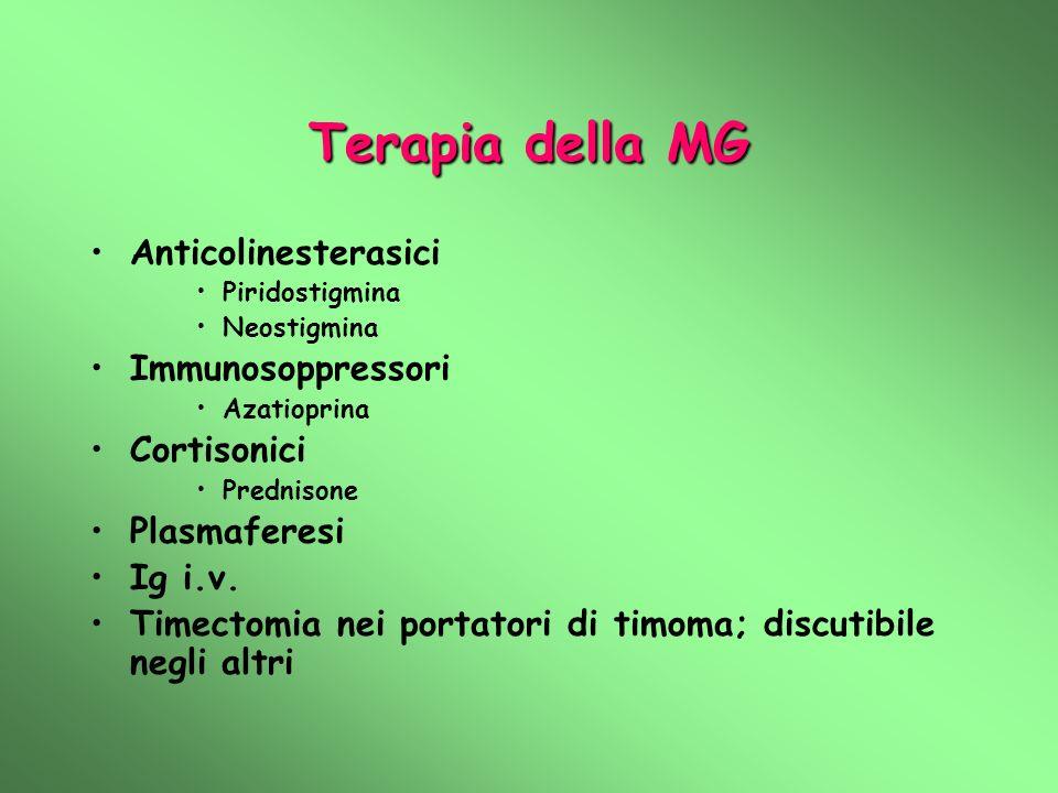 Terapia della MG Anticolinesterasici Piridostigmina Neostigmina Immunosoppressori Azatioprina Cortisonici Prednisone Plasmaferesi Ig i.v. Timectomia n