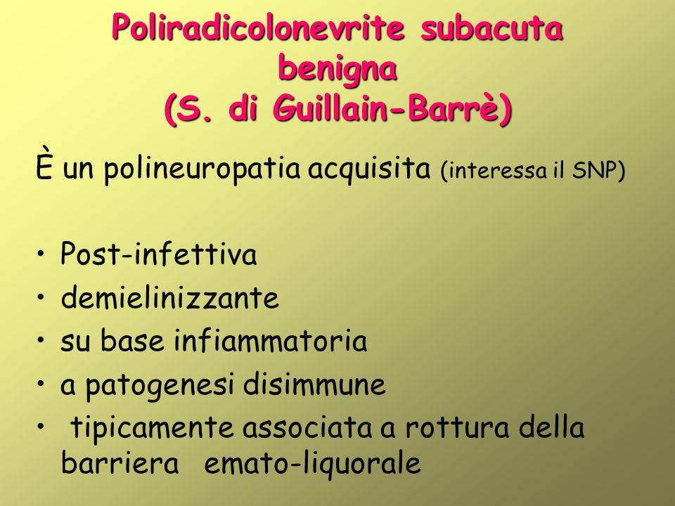 Poliradicolonevrite subacuta benigna (S. di Guillain-Barrè) È un polineuropatia acquisita (interessa il SNP) Post-infettiva demielinizzante su base in