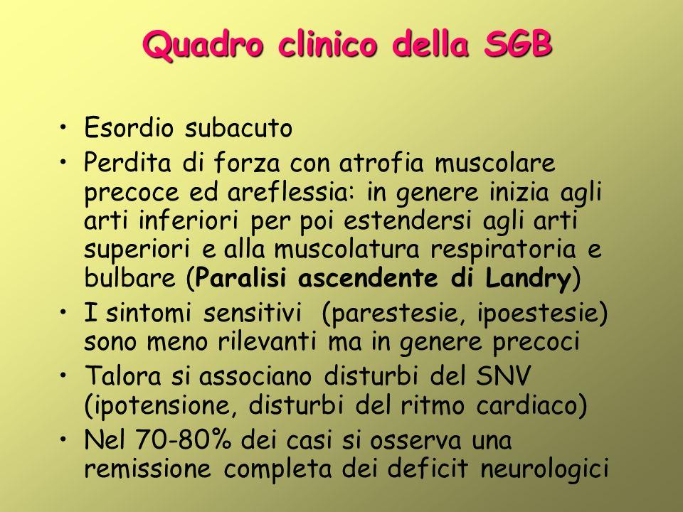 Quadro clinico della SGB Esordio subacuto Perdita di forza con atrofia muscolare precoce ed areflessia: in genere inizia agli arti inferiori per poi e
