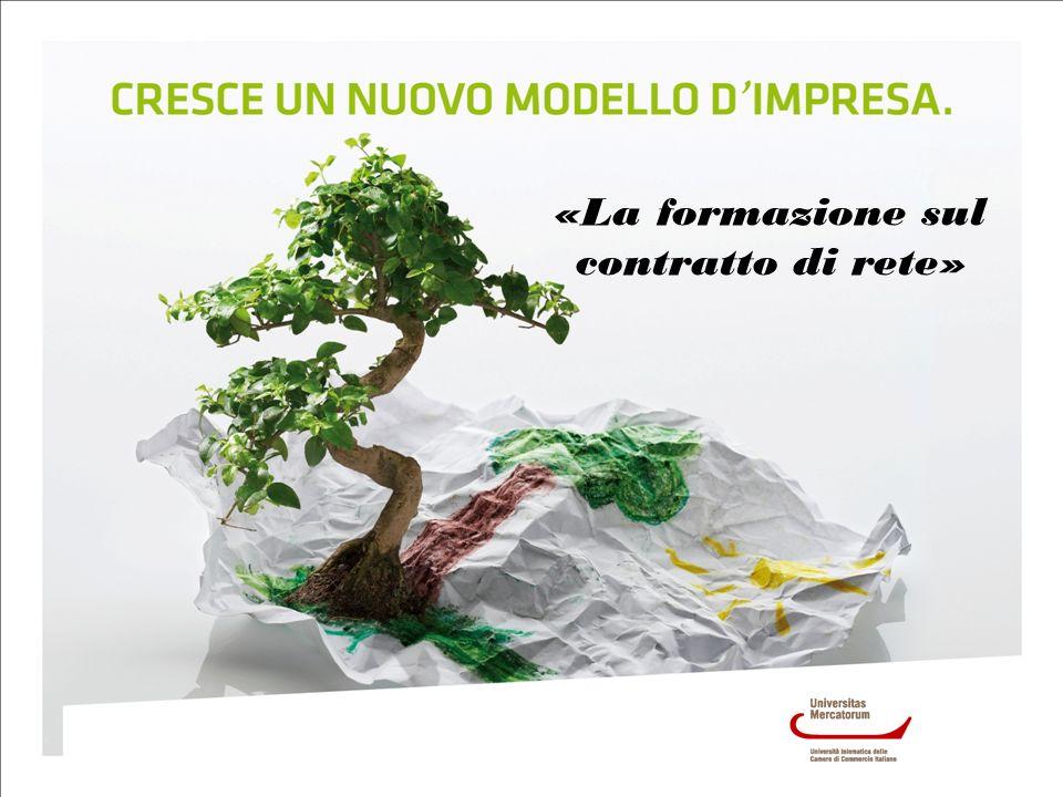 Lultima tipologia di incentivazione delle reti di imprese riguarda i contributi a fondo perduto messi a disposizione dalle Regioni.