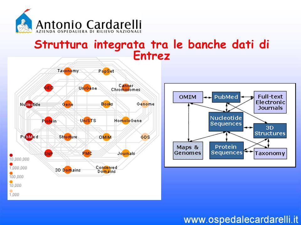 Struttura integrata tra le banche dati di Entrez