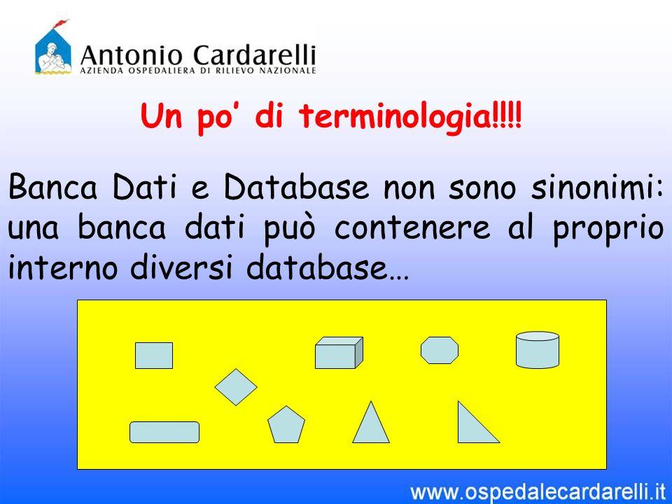 Un po di terminologia!!!! Banca Dati e Database non sono sinonimi: una banca dati può contenere al proprio interno diversi database…