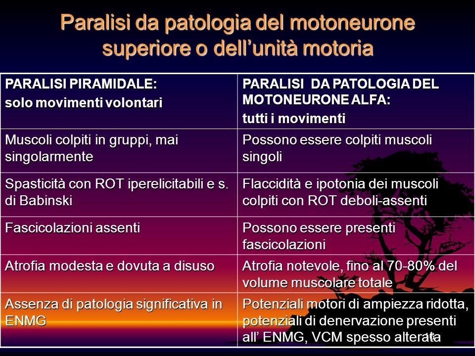 16 Paralisi da patologia del motoneurone superiore o dellunità motoria PARALISI PIRAMIDALE: solo movimenti volontari PARALISI DA PATOLOGIA DEL MOTONEU
