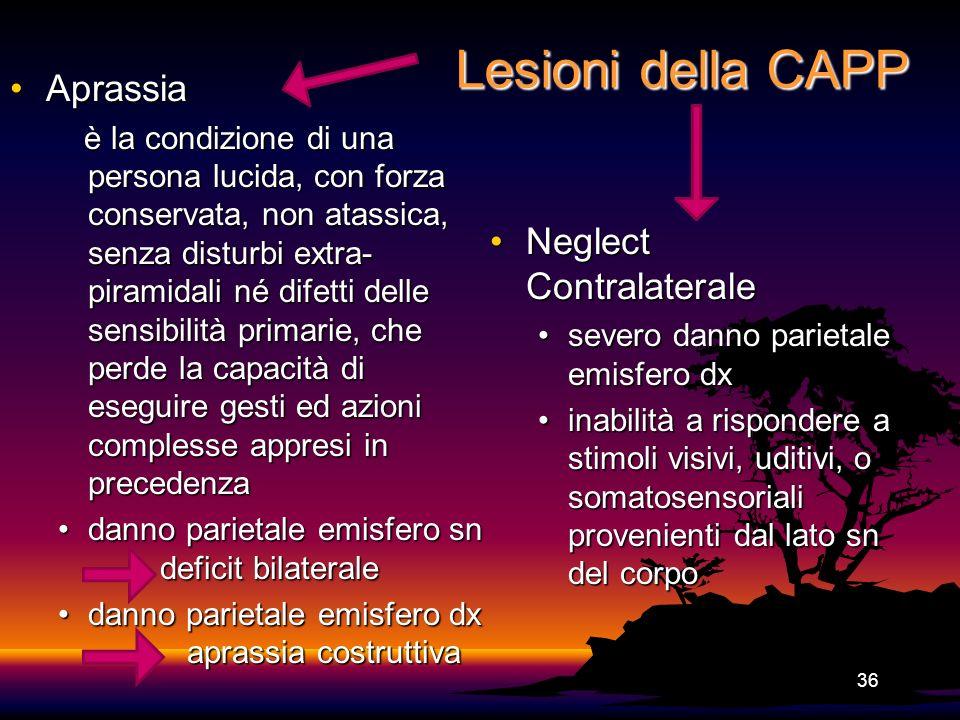 Lesioni della CAPP AprassiaAprassia è la condizione di una persona lucida, con forza conservata, non atassica, senza disturbi extra- piramidali né dif