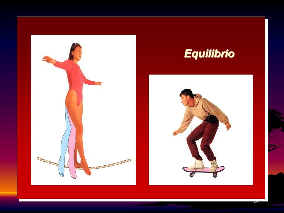 54 Equilibrio