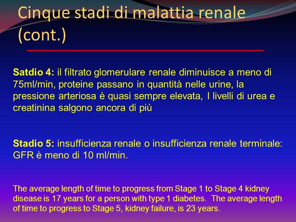 Cinque stadi di malattia renale P. Melga -DiSEM - Univ. Genova Stadio 1: iperfiltrazione. I reni aumentano di dimensioni Stadio2 : I glomeruli cominci