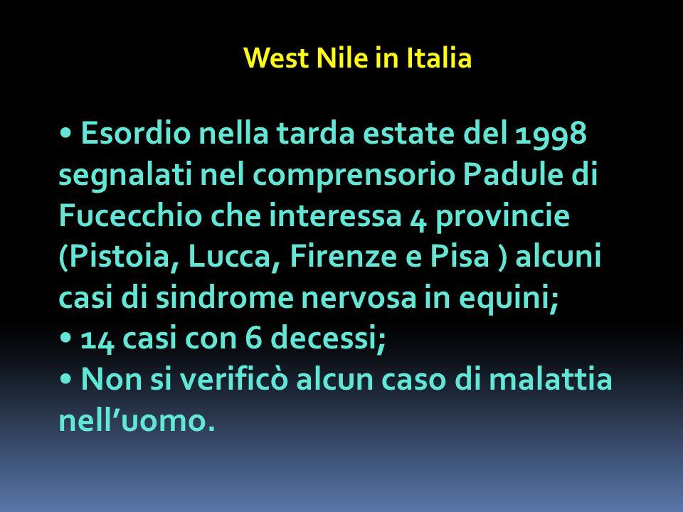 West Nile in Italia Esordio nella tarda estate del 1998 segnalati nel comprensorio Padule di Fucecchio che interessa 4 provincie (Pistoia, Lucca, Fire