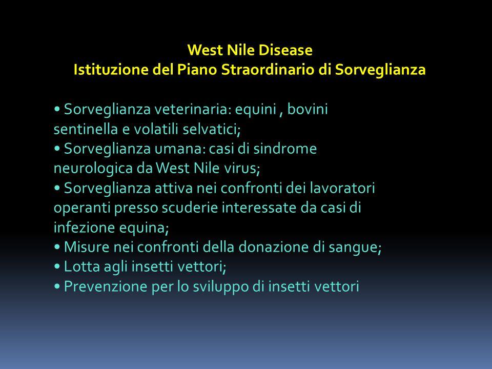 West Nile Disease Istituzione del Piano Straordinario di Sorveglianza Sorveglianza veterinaria: equini, bovini sentinella e volatili selvatici; Sorveg