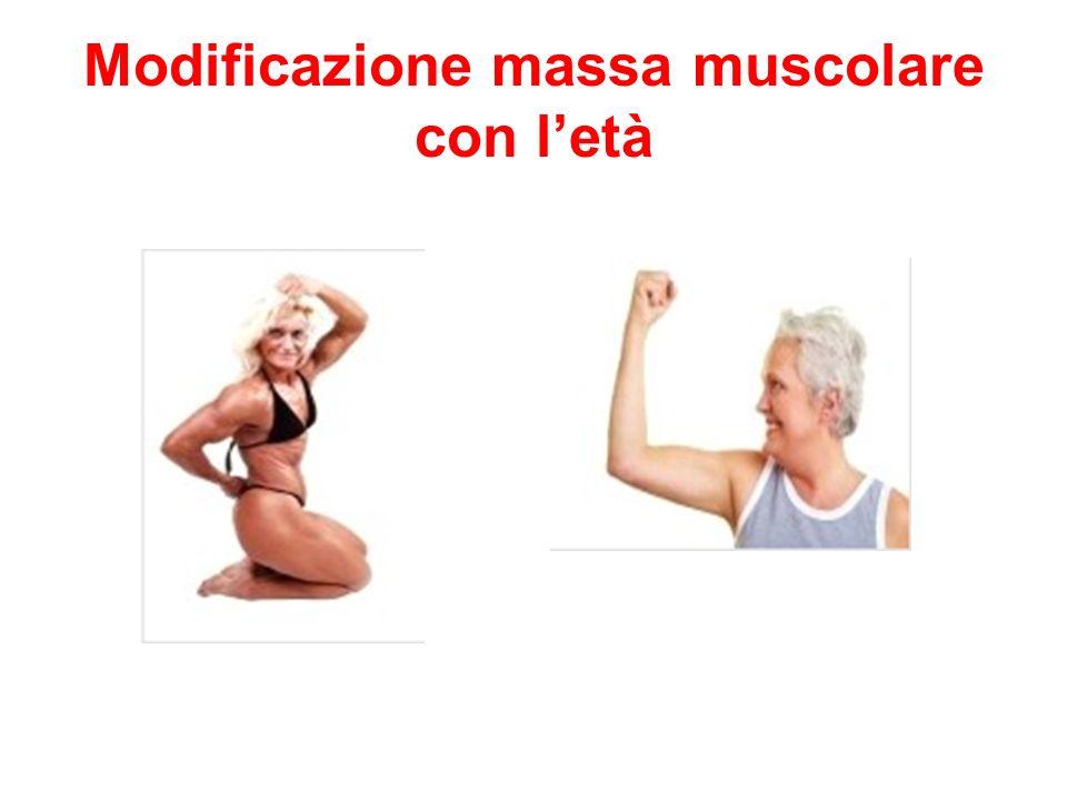Modificazione massa muscolare con letà