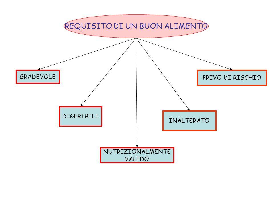 GRADEVOLE DIGERIBILE NUTRIZIONALMENTE VALIDO INALTERATO PRIVO DI RISCHIO REQUISITO DI UN BUON ALIMENTO