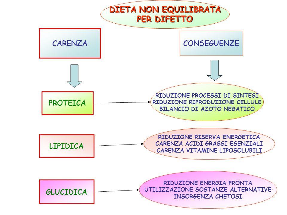 CARENZA CONSEGUENZE PROTEICA RIDUZIONE PROCESSI DI SINTESI RIDUZIONE RIPRODUZIONE CELLULE BILANCIO DI AZOTO NEGATICO LIPIDICA RIDUZIONE RISERVA ENERGE