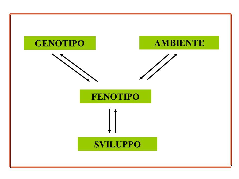 GENOTIPO FENOTIPO SVILUPPO AMBIENTE
