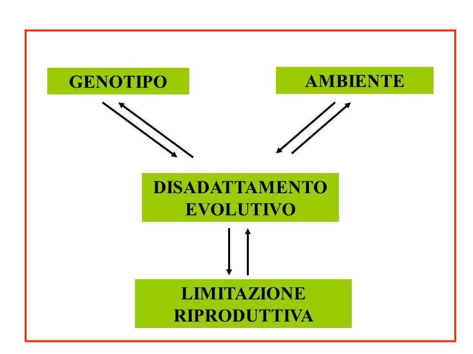 GENOTIPO DISADATTAMENTO EVOLUTIVO LIMITAZIONE RIPRODUTTIVA AMBIENTE