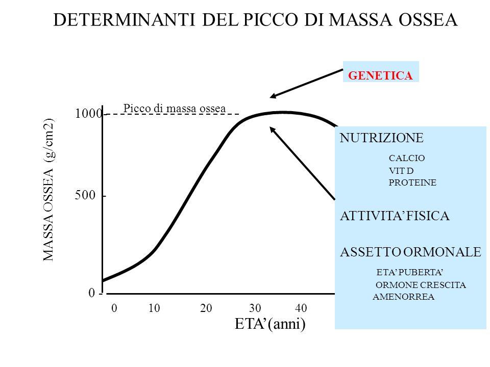 0 10 20 30 40 50 60 MASSA OSSEA (g/cm2) ETA(anni) 1000- 500 - 0 - Picco di massa ossea DETERMINANTI DEL PICCO DI MASSA OSSEA GENETICA NUTRIZIONE CALCI