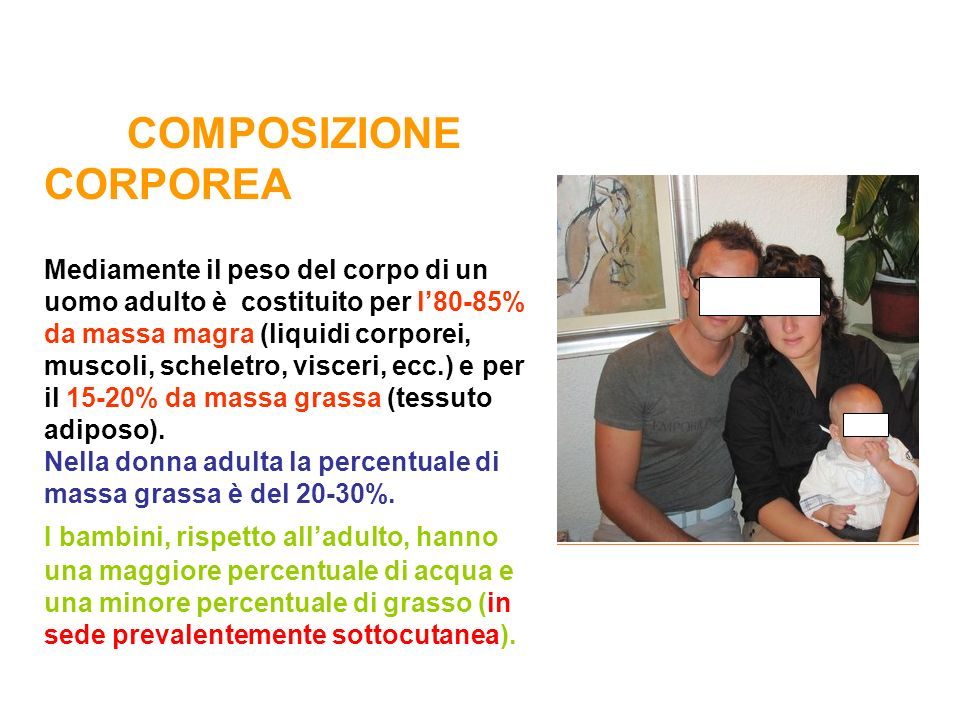 COMPOSIZIONE CORPOREA Mediamente il peso del corpo di un uomo adulto è costituito per l80-85% da massa magra (liquidi corporei, muscoli, scheletro, vi