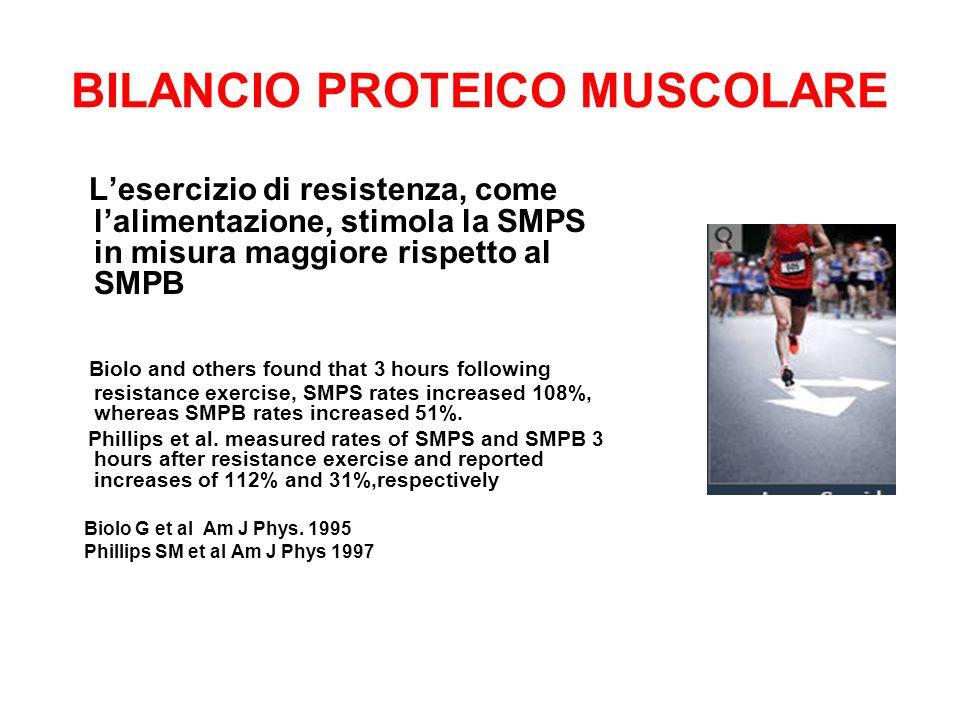 BILANCIO PROTEICO MUSCOLARE Lesercizio di resistenza, come lalimentazione, stimola la SMPS in misura maggiore rispetto al SMPB Biolo and others found