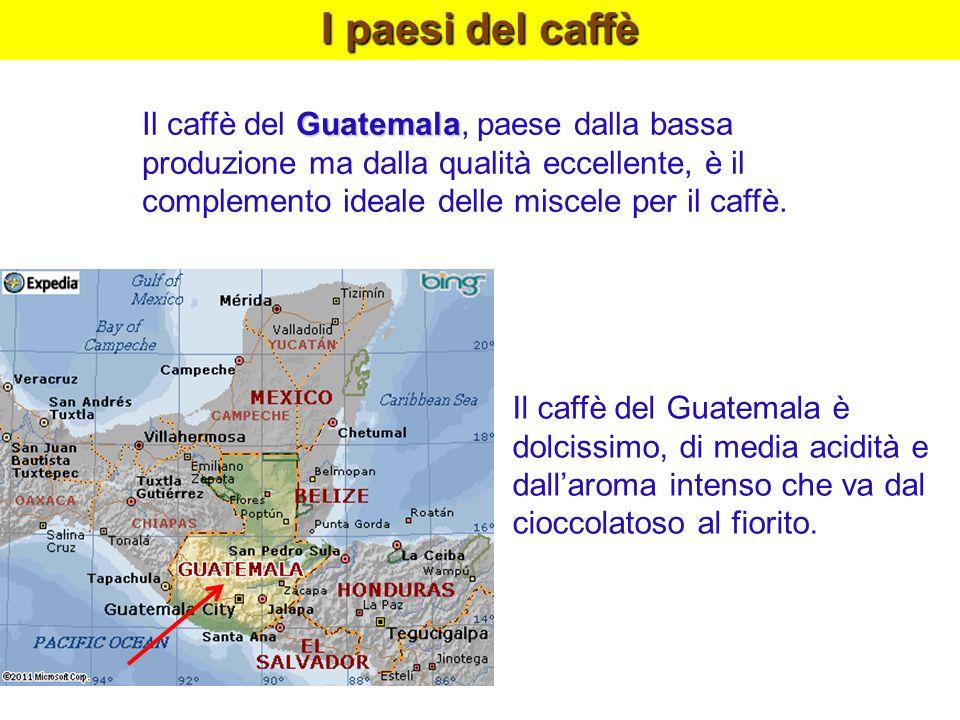 I paesi del caffè Guatemala Il caffè del Guatemala, paese dalla bassa produzione ma dalla qualità eccellente, è il complemento ideale delle miscele pe