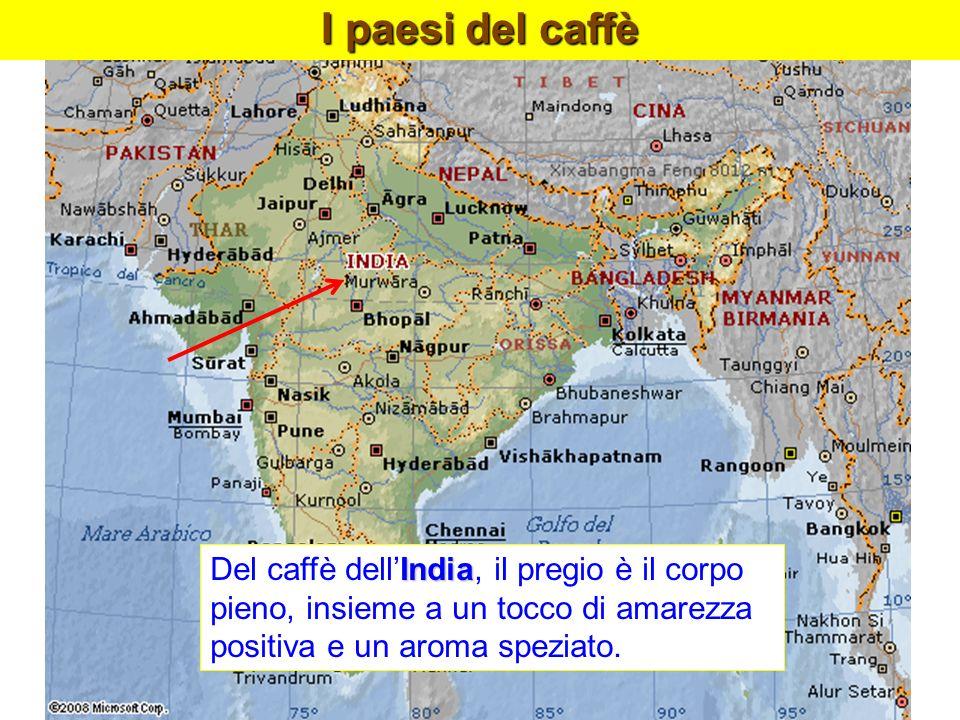 India Del caffè dellIndia, il pregio è il corpo pieno, insieme a un tocco di amarezza positiva e un aroma speziato. I paesi del caffè