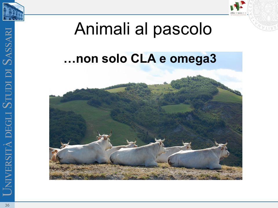 36 Animali al pascolo …non solo CLA e omega3