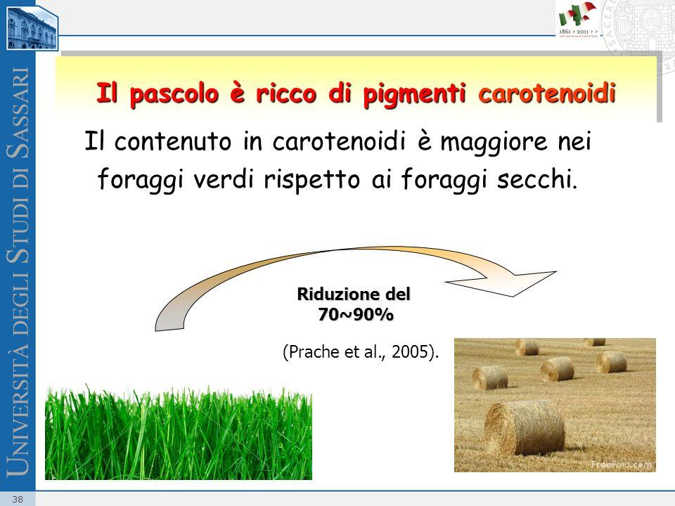 38 Il contenuto in carotenoidi è maggiore nei foraggi verdi rispetto ai foraggi secchi. Riduzione del 70~90% (Prache et al., 2005). Il pascolo è ricco