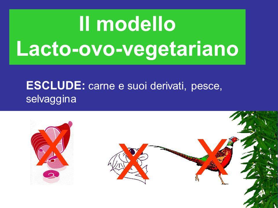 La dieta vegetariana Esistono vari modelli di dieta vegetariana Lacto-ovo-vegetariano Lacto-vegetariano Vegano