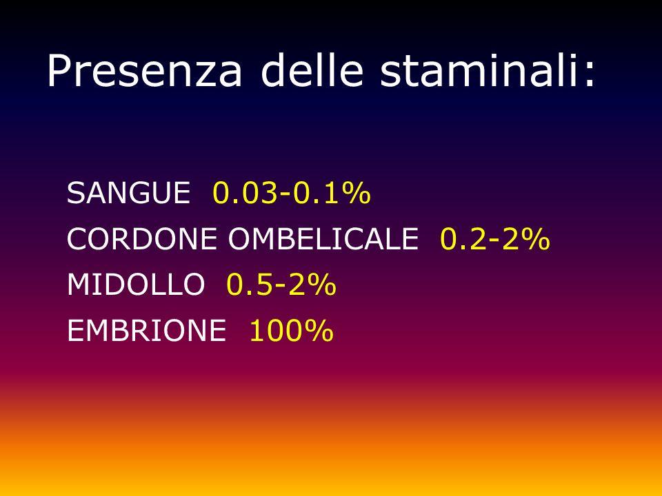 Presenza delle staminali: SANGUE 0.03-0.1% CORDONE OMBELICALE 0.2-2% MIDOLLO 0.5-2% EMBRIONE 100%