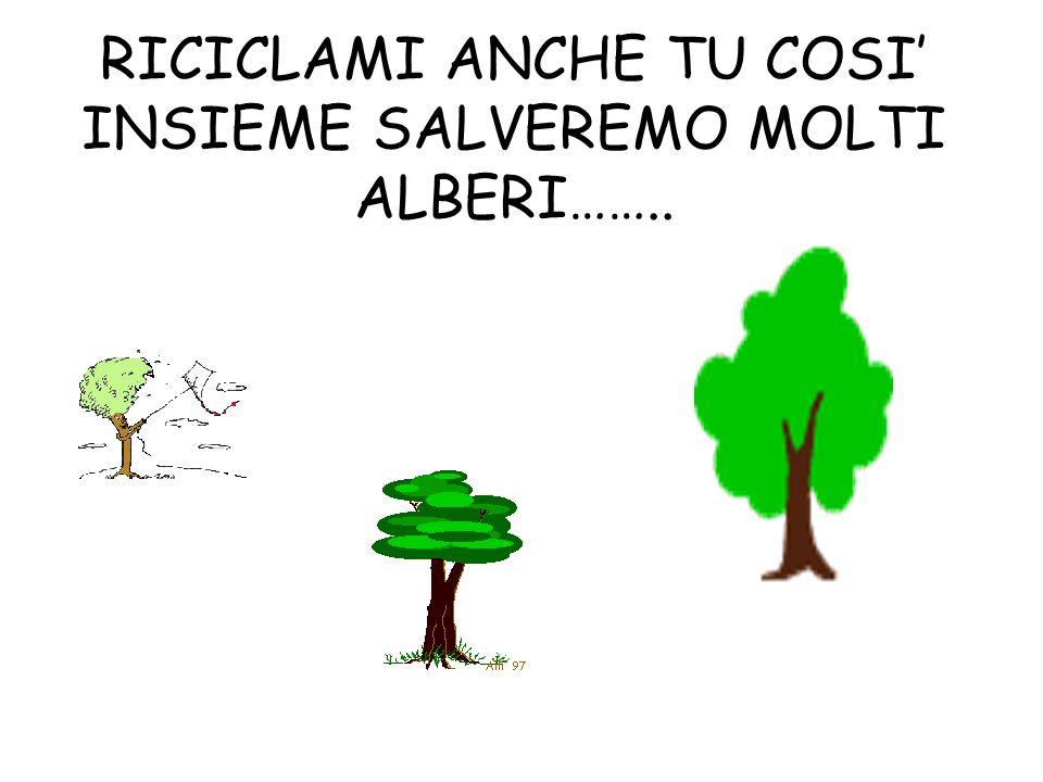 RICICLAMI ANCHE TU COSI INSIEME SALVEREMO MOLTI ALBERI……..