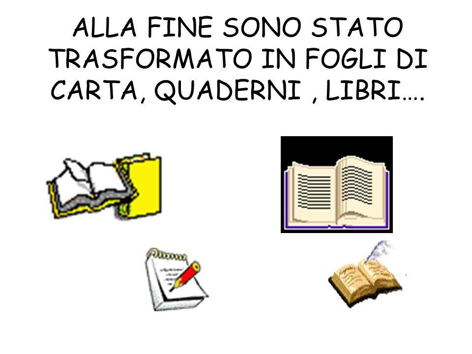 ALLA FINE SONO STATO TRASFORMATO IN FOGLI DI CARTA, QUADERNI, LIBRI….