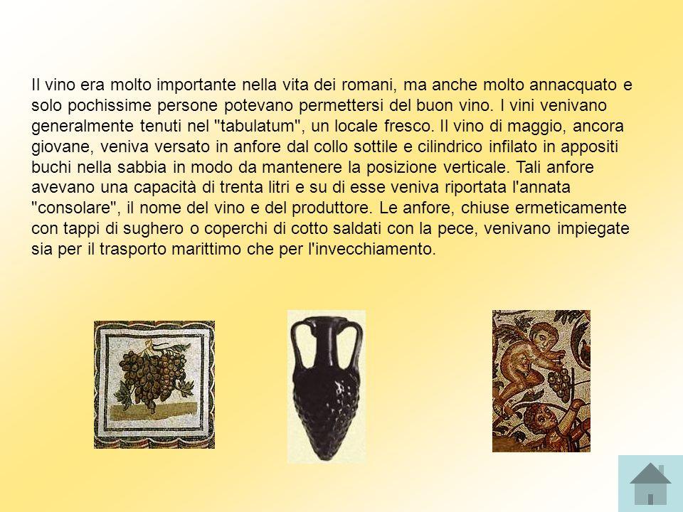 Il vino era molto importante nella vita dei romani, ma anche molto annacquato e solo pochissime persone potevano permettersi del buon vino.