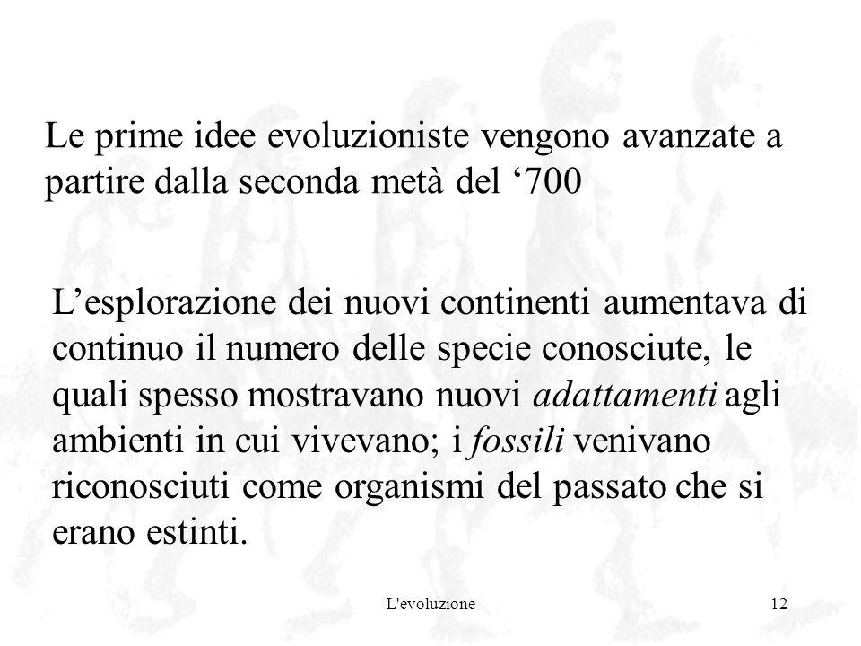 L'evoluzione12 Le prime idee evoluzioniste vengono avanzate a partire dalla seconda metà del 700 Lesplorazione dei nuovi continenti aumentava di conti