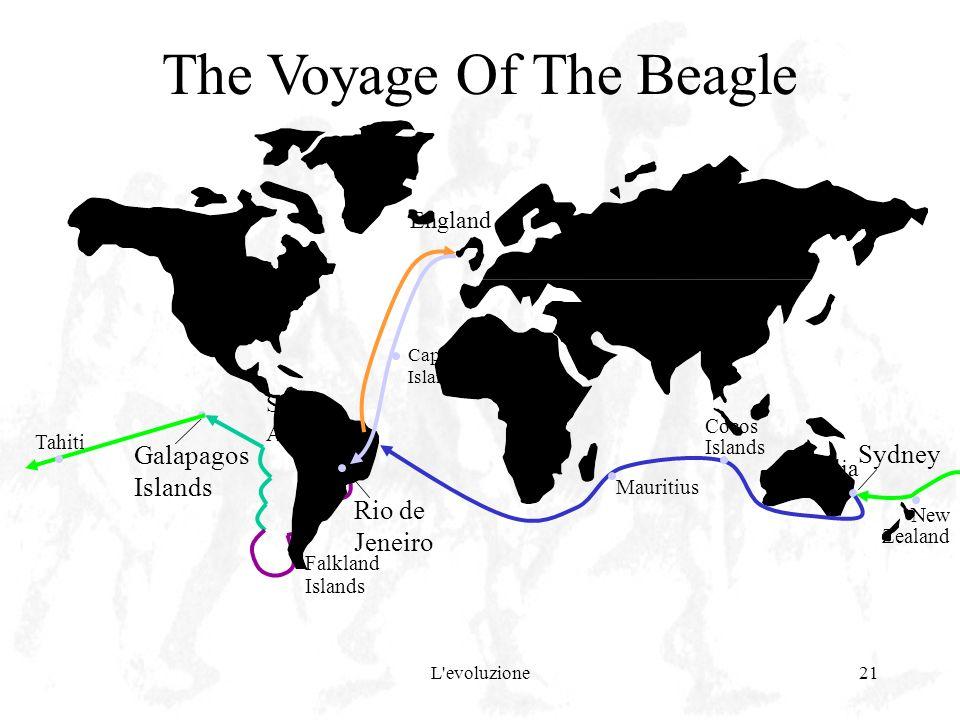 L'evoluzione21 Galapagos Islands Falkland Islands The Voyage Of The Beagle South America Rio de Jeneiro England Cape Verde Islands Australia Sydney Ne