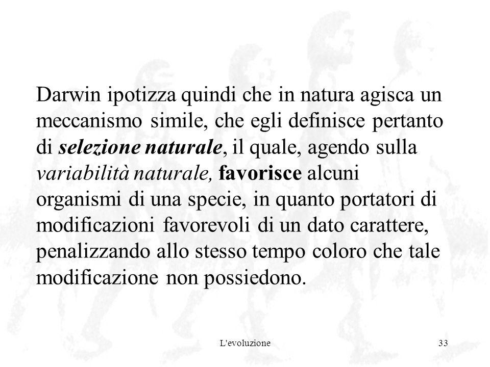 L'evoluzione33 Darwin ipotizza quindi che in natura agisca un meccanismo simile, che egli definisce pertanto di selezione naturale, il quale, agendo s