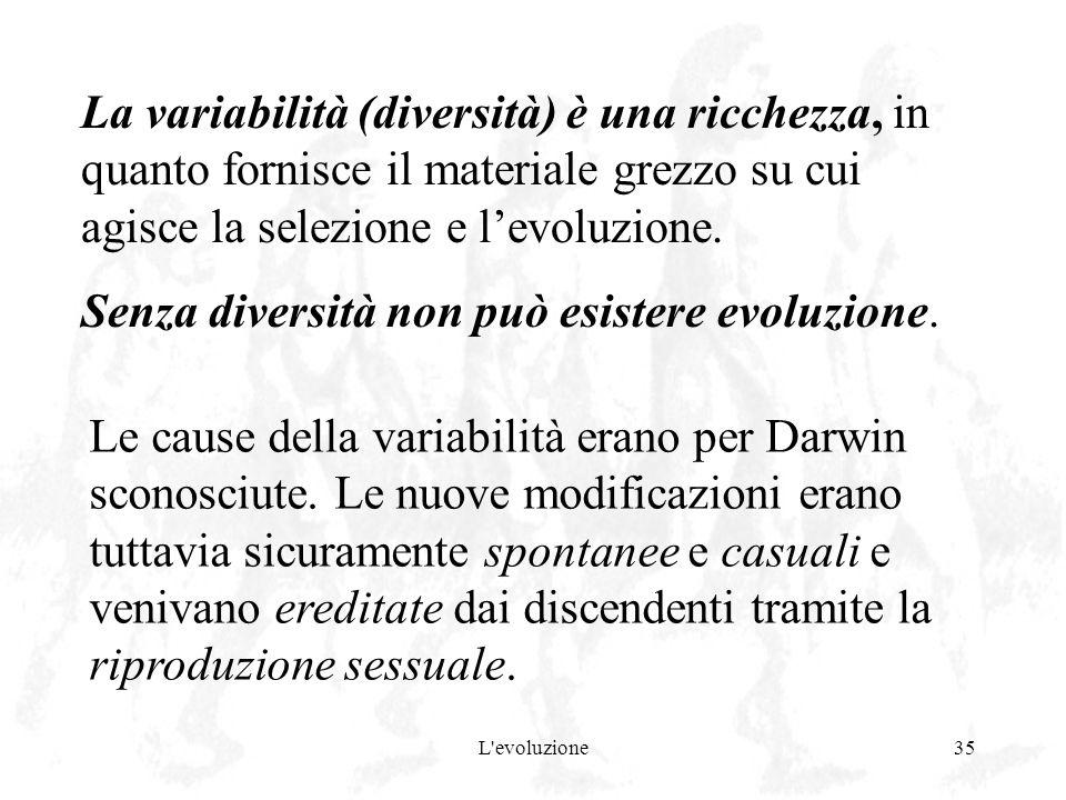 L'evoluzione35 La variabilità (diversità) è una ricchezza, in quanto fornisce il materiale grezzo su cui agisce la selezione e levoluzione. Senza dive
