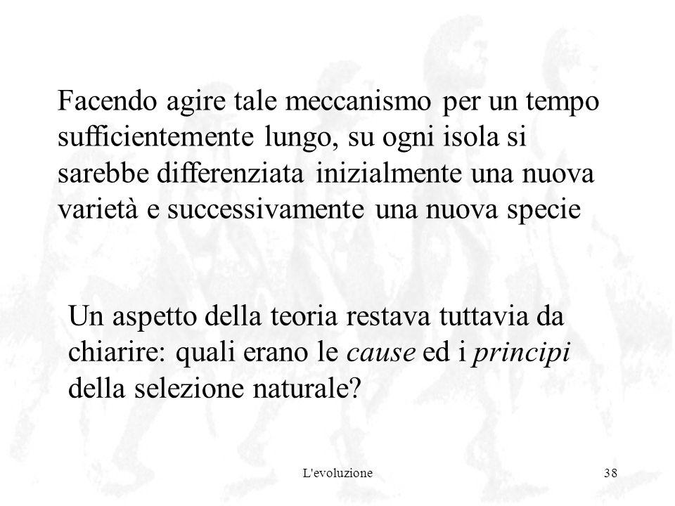 L'evoluzione38 Un aspetto della teoria restava tuttavia da chiarire: quali erano le cause ed i principi della selezione naturale? Facendo agire tale m