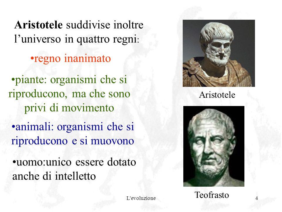 L'evoluzione4 Aristotele suddivise inoltre luniverso in quattro regni : regno inanimato piante: organismi che si riproducono, ma che sono privi di mov