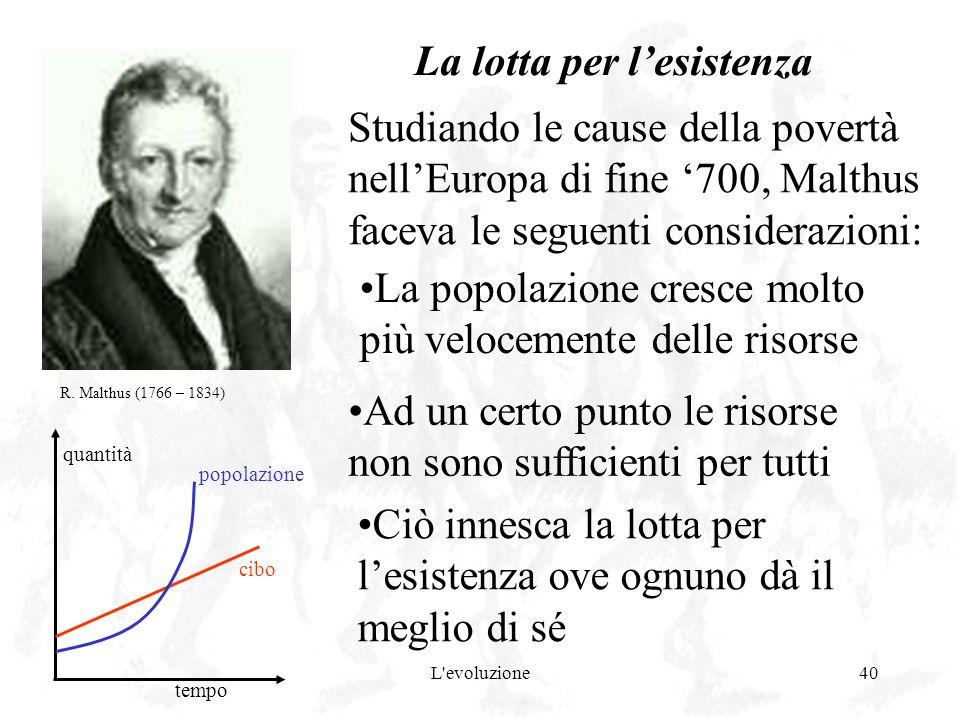 L'evoluzione40 La lotta per lesistenza Studiando le cause della povertà nellEuropa di fine 700, Malthus faceva le seguenti considerazioni: quantità te