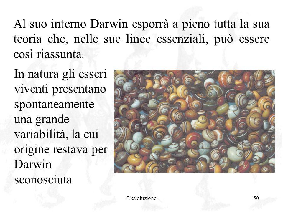 L'evoluzione50 Al suo interno Darwin esporrà a pieno tutta la sua teoria che, nelle sue linee essenziali, può essere così riassunta : In natura gli es